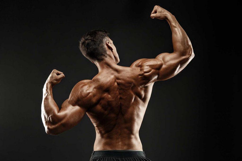 biceps con calistenia