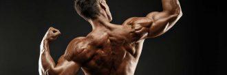 Bíceps calistenia
