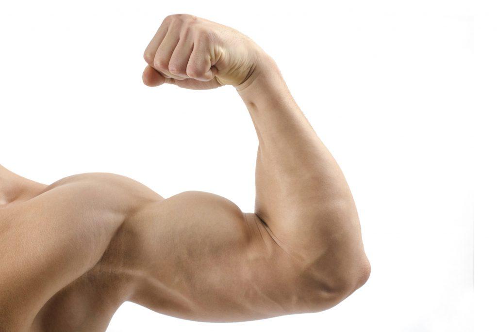 aumentar biceps calistenia